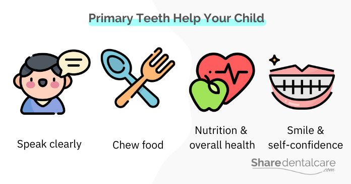 Teaching dental hygiene to preschoolers is important to maintaining their primary teeth.